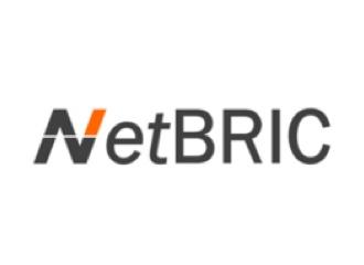 NetBRIC