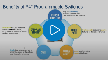 Programmable Switches